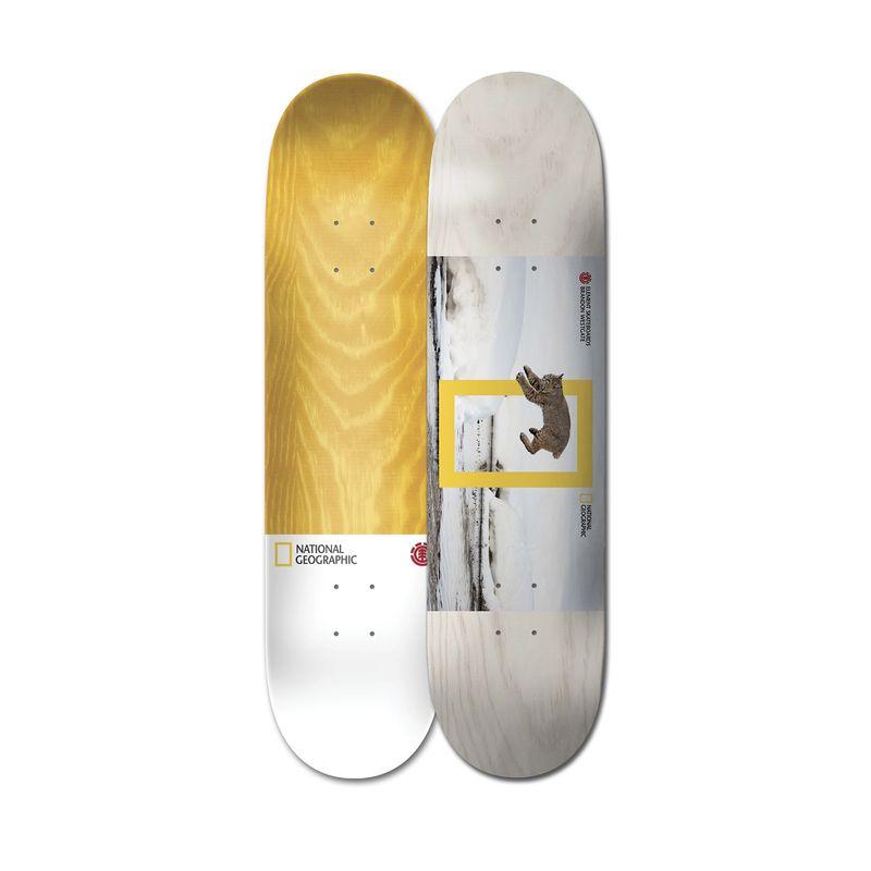 Tabla-de-Skateboard-8.1-Nat-Geo-Westgate-Cat